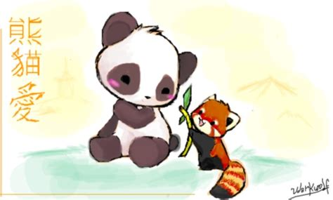 What is difference between a panda and a red panda? - Quora
