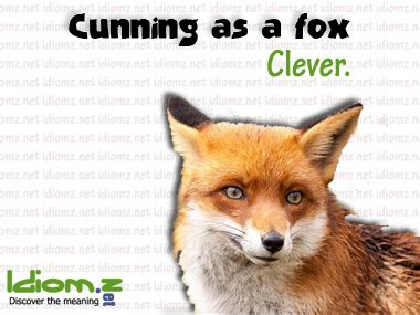 """Learn English Idioms on Twitter: """"#idiom : Cunning as a"""