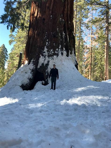 Sequoia & Kings Canyon National Park Hiking Trails