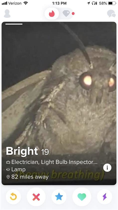 Moth memes are leaking : Tinder