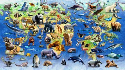 Endangered Species Act (ESA) - CCoWS Wiki