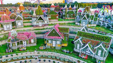 In pictures: Dubai Miracle Garden, The power of the flower