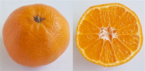 A guide to mandarin oranges: 11 types of citrus for the