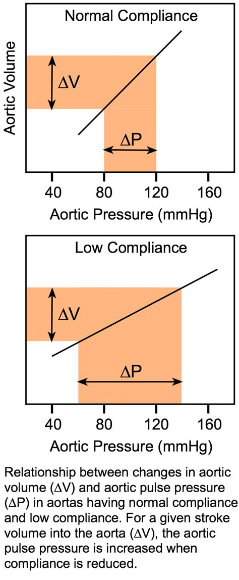 CV Physiology | Arterial and Aortic Pulse Pressure