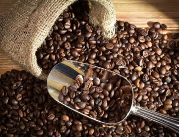 What Does 100% Arabica Mean? | Hawaii's Local Buzz