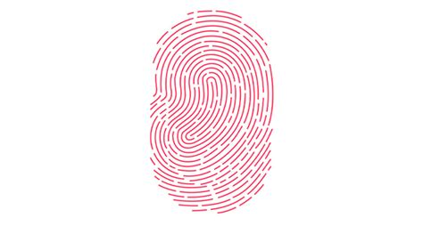 Touch ID not working properly? Here's the fix - iOS Hacker