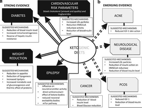 Science Report: A Review of VLC/Ketogenic Diets